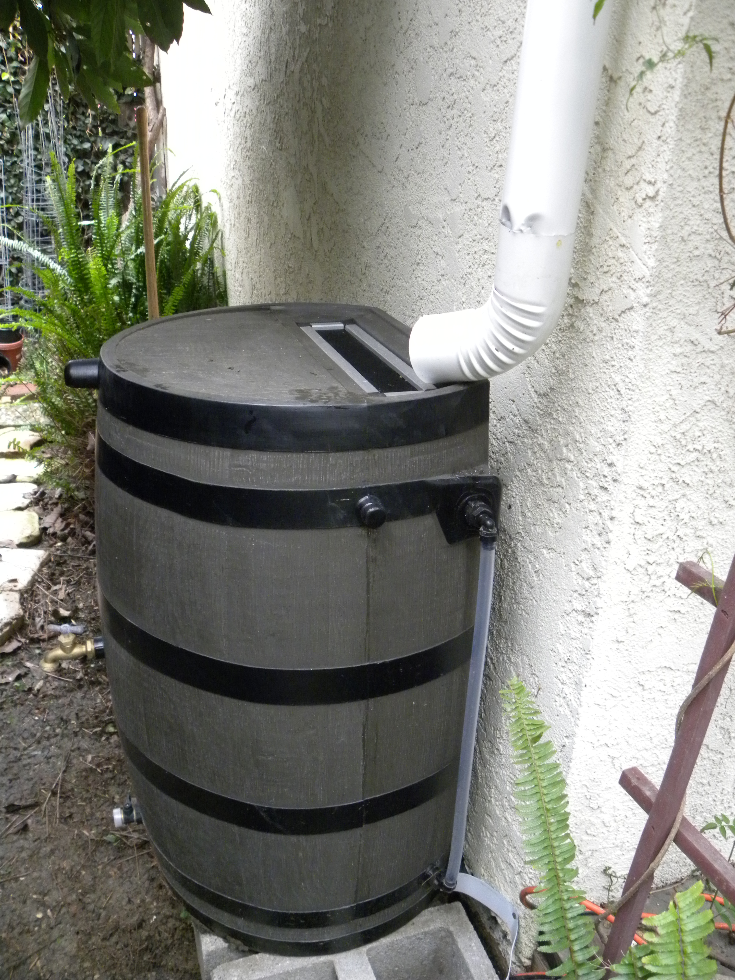 Setting Up And Using Rain Barrels Lou Murray S Green World