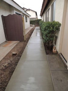 Our new neighbors to the south removed the HUGE cypress trees whose roots had cracked our sidewalk. This is our new sidewalk. New fence to come later.