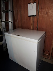 "Our ""new"" chest freezer"