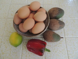 I am down to the last few avocados. Incredibly enough, we are still harvesting a bell pepper or two as well. And the hens are inundating us with eggs, up to 28 a week!