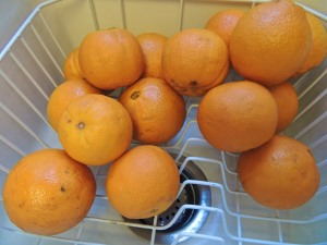 Did someone say ORANGES? This is what was left AFTER we took a bag down to our son Scott for Easter.