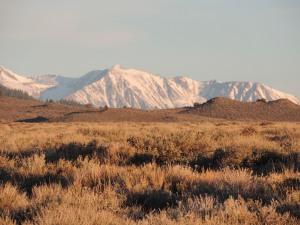 These sagebrush flats are part of the Great Basin sagebrush habitat.