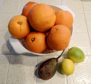 Navel oranges, limes and an avocado