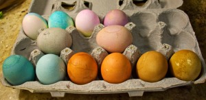 Eggs in front were dyed with natural dyes. The ones in the back row were dyed using standard Easter egg food coloring dyes.