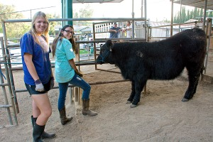 Megan and Jenna with Beaux, an Angus-Simmental-Maine Anjou crossbred calf.