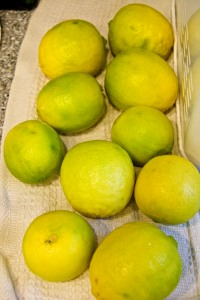 We are getting a lot of limes, and have given some away and donated some to our local food bank. The lime harvest is finally slowing down. I hope.