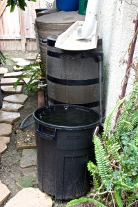 This is our main rainwater collection area--three rain barrels under a downspout plus an over-flow barrel.