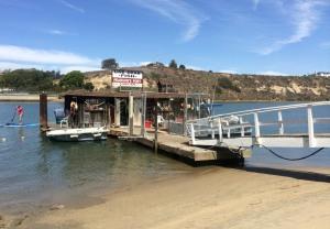 Pearson's Port fish shop
