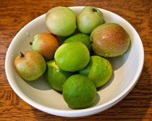 We are finally getting some food from the yard. Here are limes and the first of the Fuji apples.