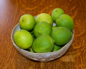 Megan harvested limes and a lemon for herself--not exactly crops one would grow in Indiana.