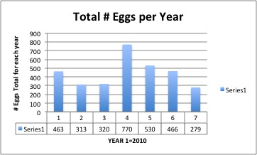 total-eggs